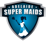 Small Logo Super Maids Cleaning Services