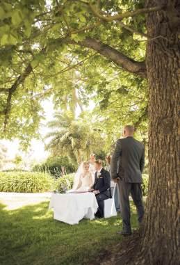 Wedding ceremony under the tree