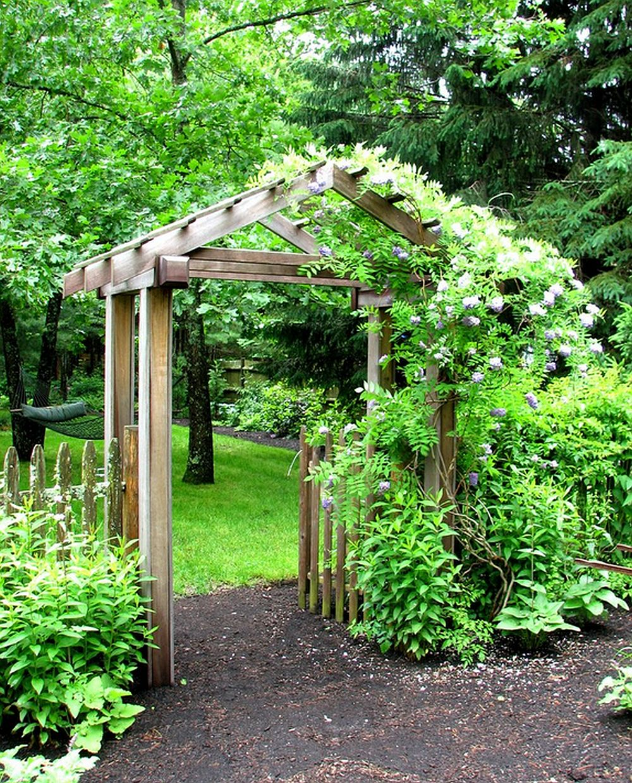 adelaparvu.com despre glicina, inflorira glicinei, text Carli Marian, Foto Garden Tech Horticultural Services LLC
