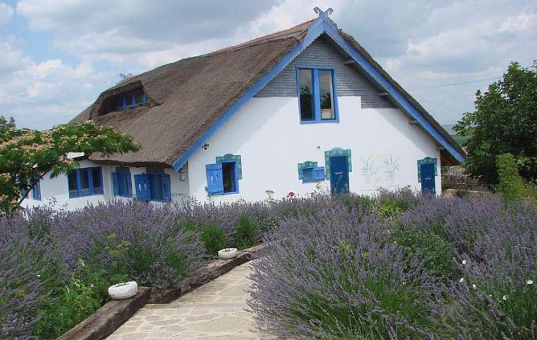 adelaparvu.com despre pensiune traditionala in Delta Dunarii, Enisala Safari, Danube Delta, Romania (14)