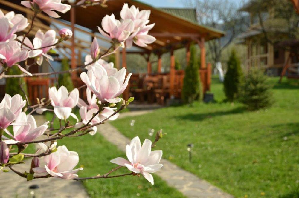 adelaparvu.com despre pensiunea Magnolia, Viseul de Sus, Maramures, Romania (3)