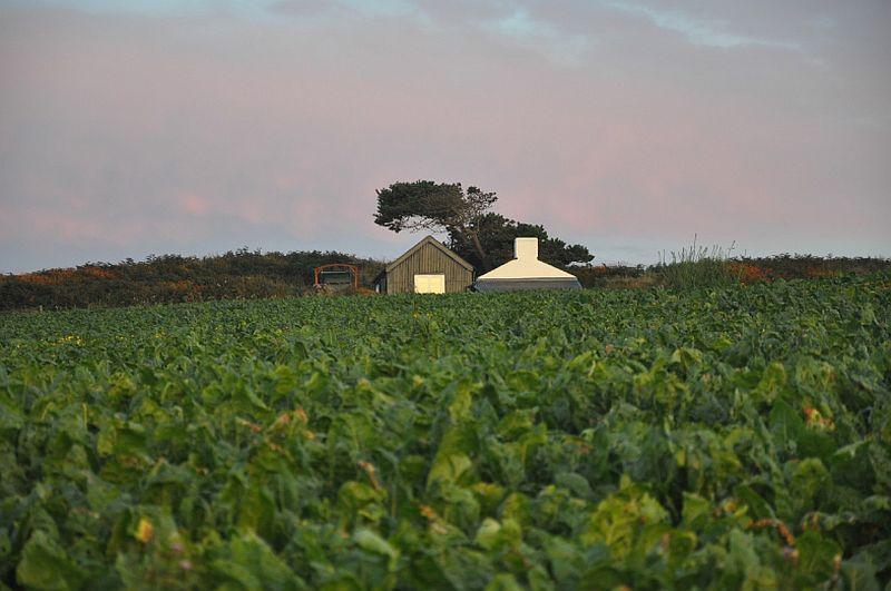 adelaparvu.com despre cabana de vacanta la mare, Cable Hut Cottage, Wales, Foto Unique Home Stays (10)