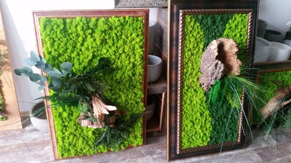 Tablouri cu plante stabilizate