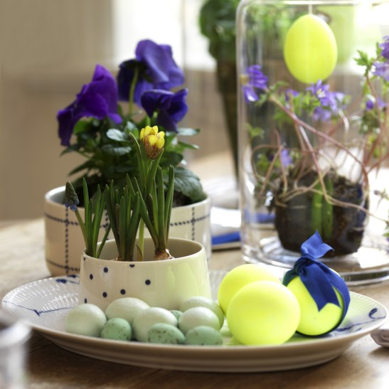 Decor pentru masa cu Chrysanthemum indicum. Intr-un astfel de decor conteaza masca pentru ghivece si modul cum sunt asortate cu vesela si evident nuanta vopselei folosita pentru oua.