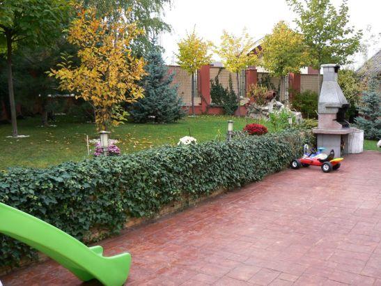 adelaparvu.com despre gradina unei case de familie la Iasi peisagist Claudiu Ivascu (8)