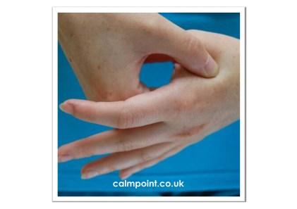 CalmPoint Hegu Point Acupressure