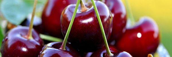 ¿Pueden las cerezas negras reducir la grasa abdominal?