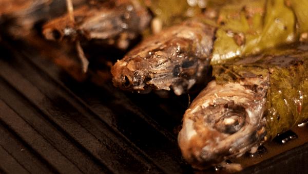 sardine in vita grill fonta