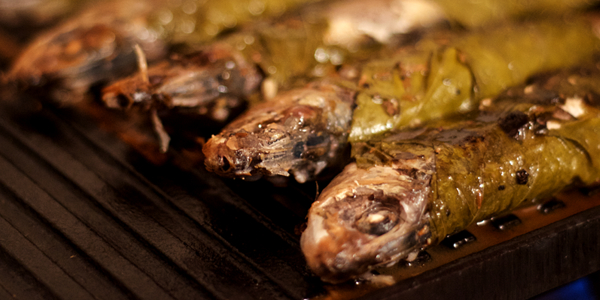 sardine grill fonta