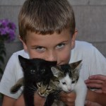 Boys Love Kittens Too..