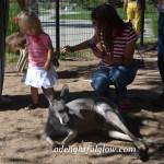 We Visit the Wildlife Park