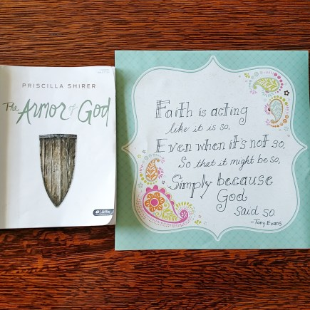 Armor of God 7