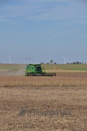 soybean-harvest-2016-7