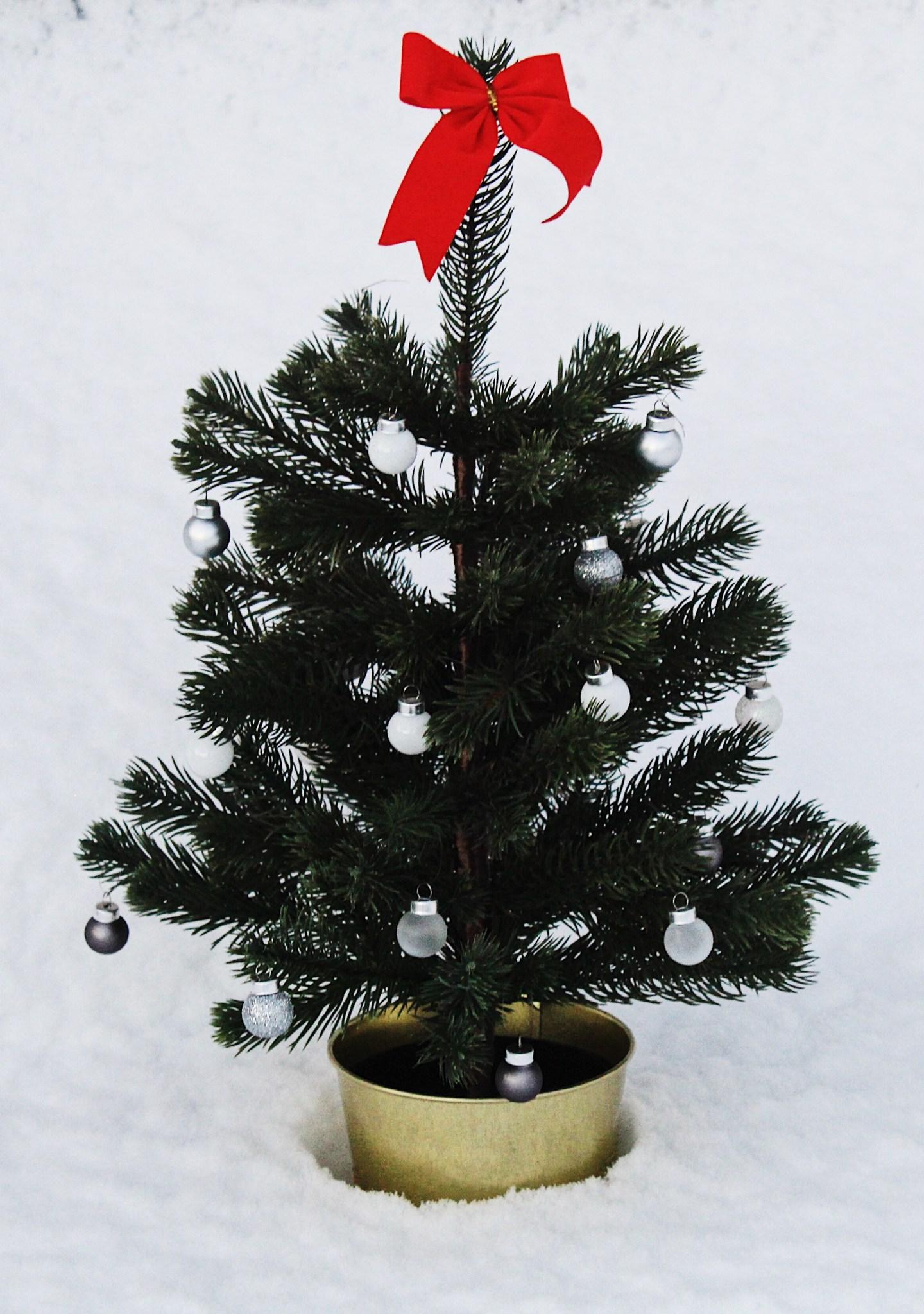 Christmas-Tree-Ikea