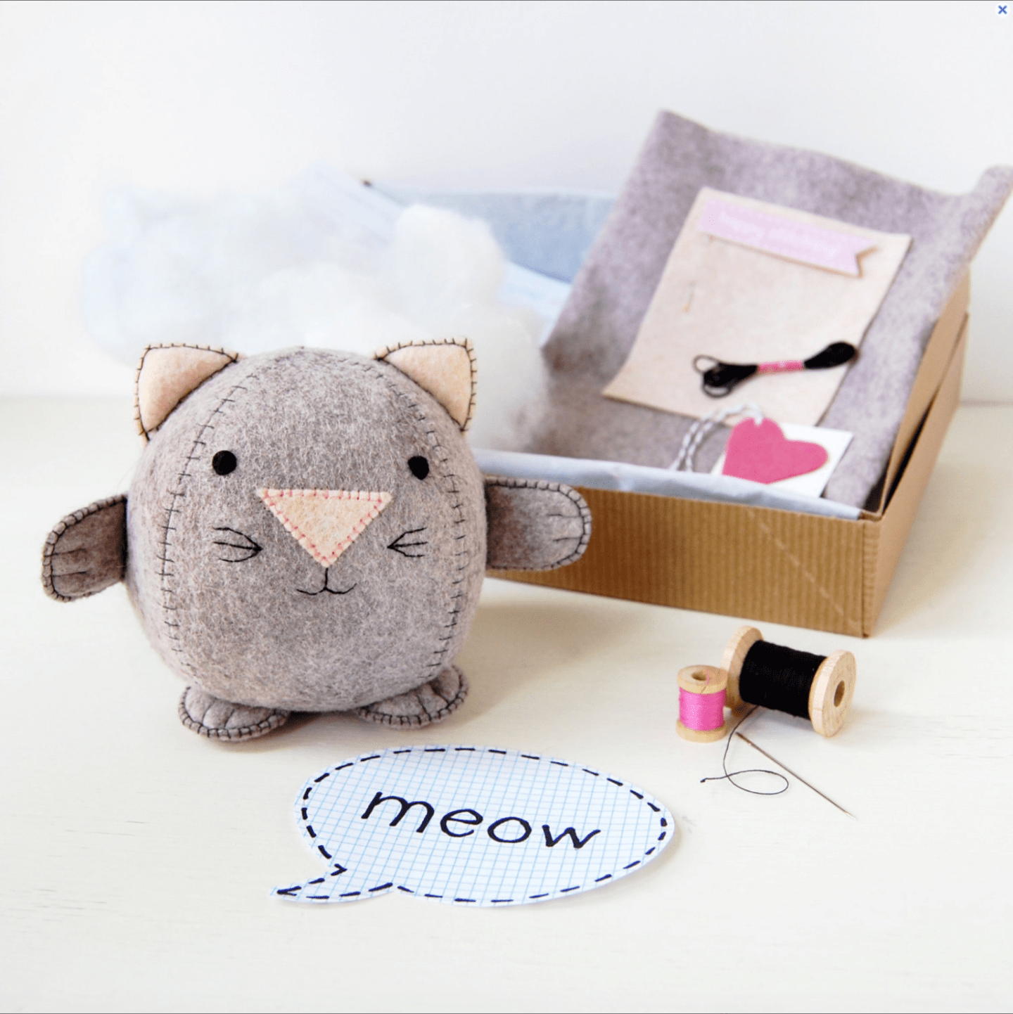 Kitten-Craft-Project