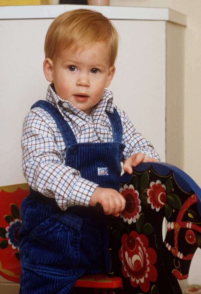 Prinz Harry hat rote Haare