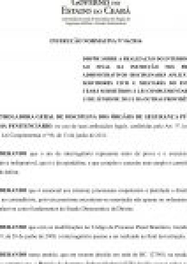 Instrução Normativa N (2)