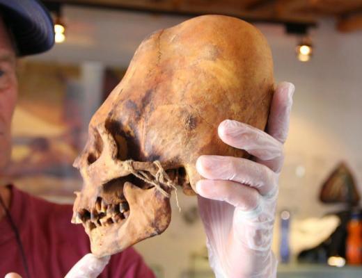 Brien Foerster Examines Elongated Paracas Skull