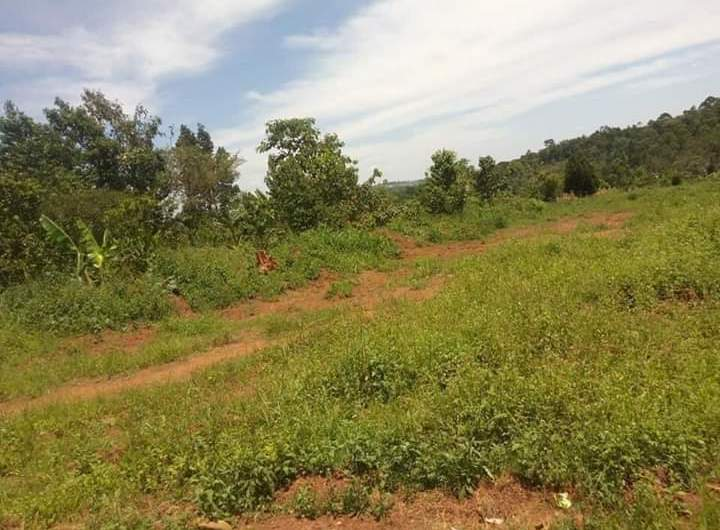 Residential Plots For Sale In Kyetume