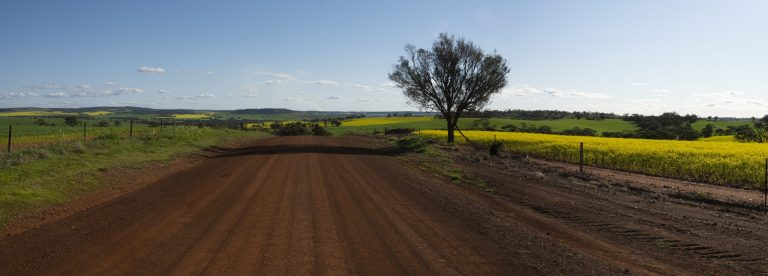A wide shot of a gravel road by the beautiful fields captured on a sunny day