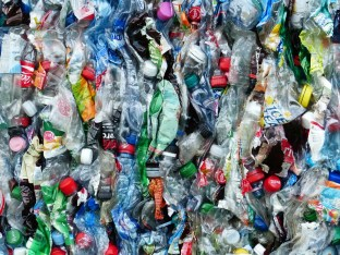 plastic bottles crushed recycling