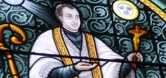 San José Vaz, Apóstol de Sri Lanka