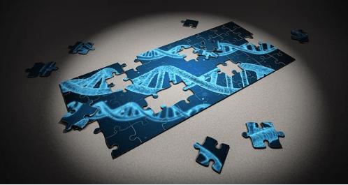 Adhs und Autismus haben gemeinsame genetische Risikofaktoren