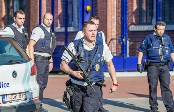 police_ciconia_alba_guns