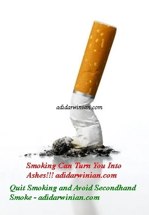 Quit Smoking and Avoid Secondhand Smoke - Adidarwinian