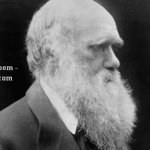 The Darwin Returns – A Poem