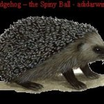 The Hedgehog – the Spiny Ball!!
