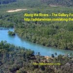 Along the Rivers – The Gallery Forests