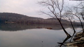 Tennessee River Bank