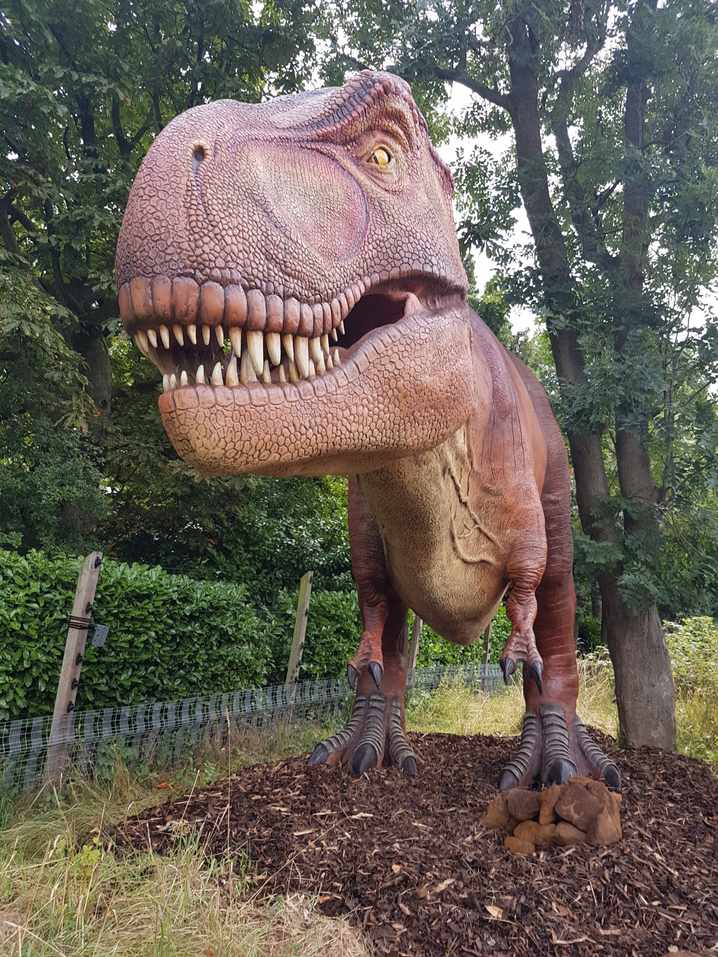 Zoorassic Park (London Zoo)