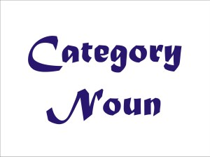 Category Noun