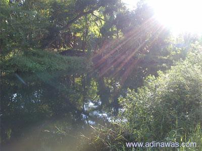 Spot Mancing Di Sungai Berbah Di Sleman Jogjakarta