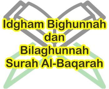 Contoh Bacaan Idgham Bighunnah Dan Bilaghunnah Surah Al Baqarah