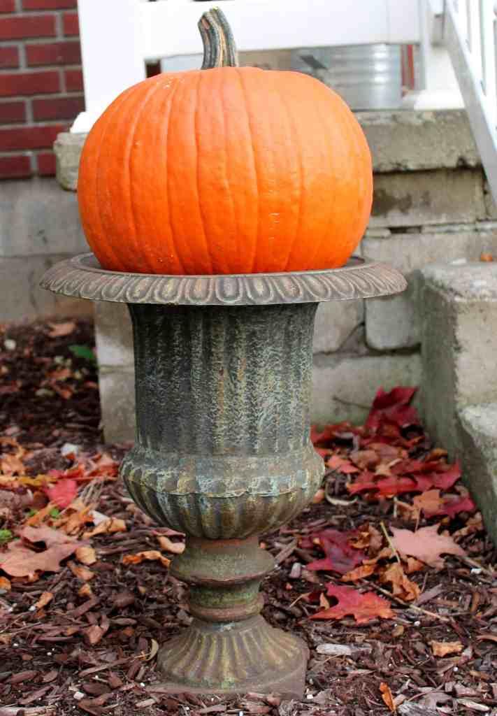 pumpkins in urns