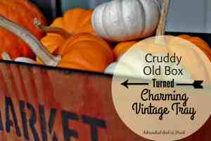 Cruddy Old Box Turned Charming Vintage Tray