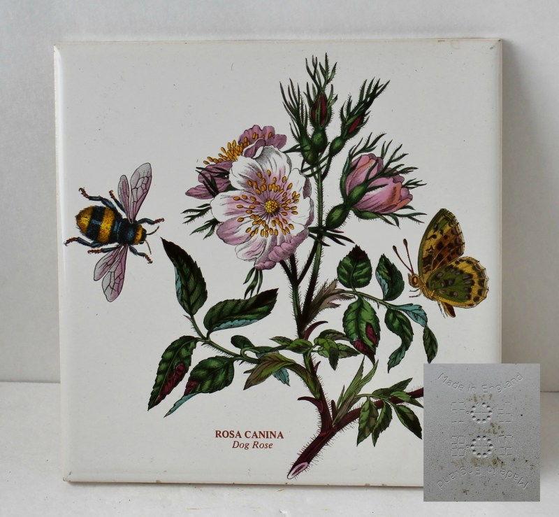 Port Meirion Botanical Tile Made in England with inset