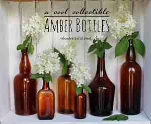 A Cool Collectible: Amber Bottles