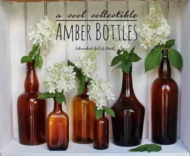 Row of vintage amber bottles with hydrangea