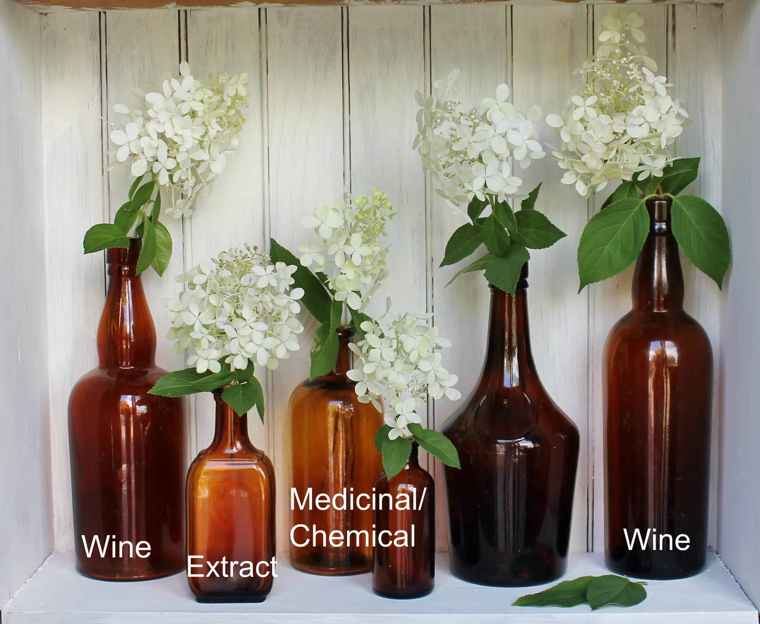 Vintage amber bottles with wines, extract, medicinal
