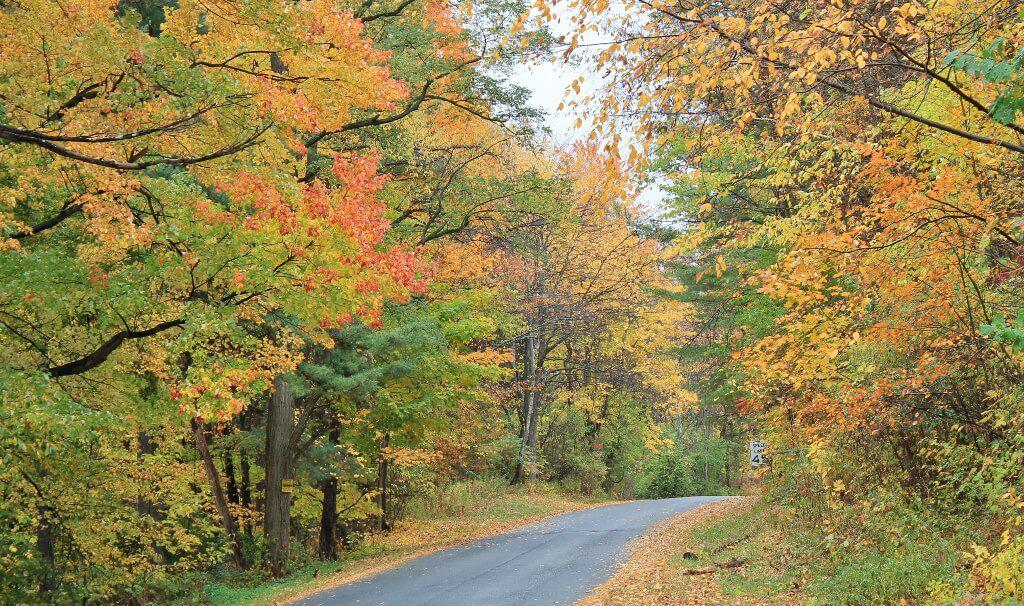 rensselaer-county-fall-folliage-2-1024x606