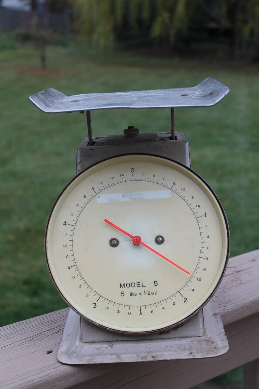 Large vintage scale