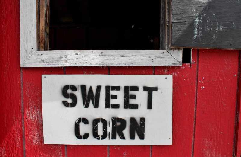 Sweet corn sign