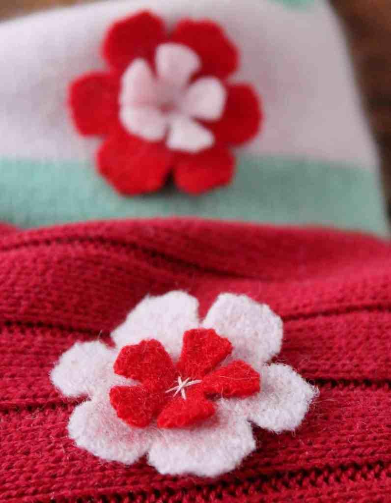 closeup of wool flower