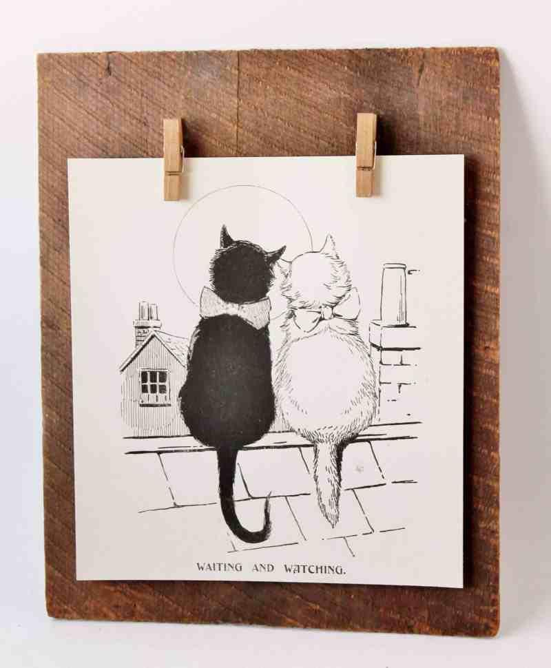 loving cat book illustration on vintage wood display