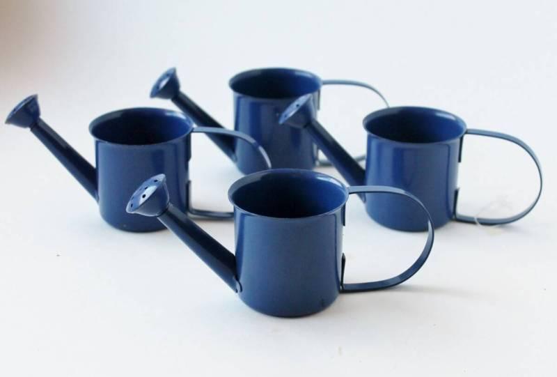 Mini Metal Watering Cans (1200x811)