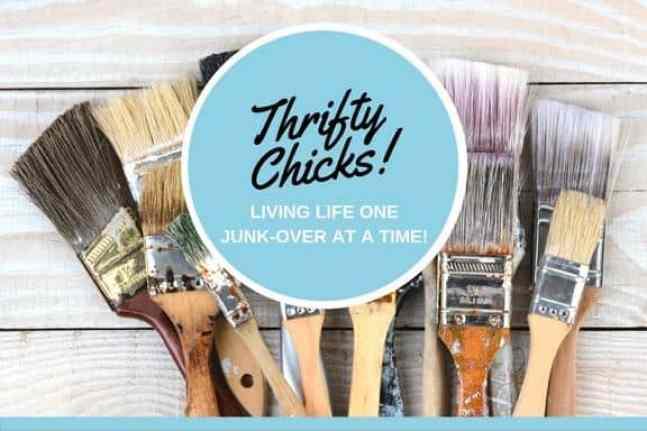 2018 Thrifty Chicks Logo